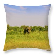 Elephant At The Road Throw Pillow