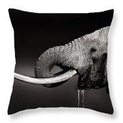 Elephant Bull Drinking Water - Duetone Throw Pillow