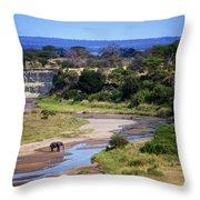 Elephant Crossing In Tarangire Throw Pillow
