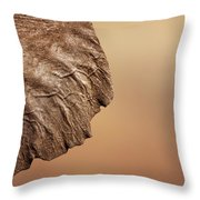 Elephant Ear Close-up Throw Pillow