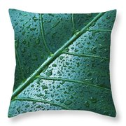 Elephant Ear Leaf Throw Pillow