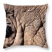 Elephant Eye Closeup  Throw Pillow