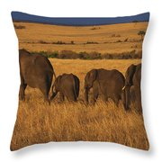Elephant Family - Sunset Stroll Throw Pillow