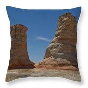 Elephant Feet Arizona Throw Pillow