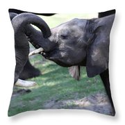 Elephant Greeting II Throw Pillow