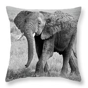 Elephant Happy And Free In Black And White Throw Pillow