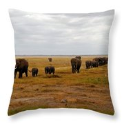 Elephant Herd Throw Pillow