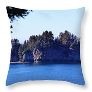 Elephant Island Kachemak Bay Throw Pillow