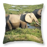 Elephant Mother And Calves Throw Pillow
