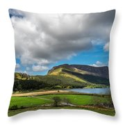 Elephant Mountain Throw Pillow