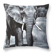 Elephant Night Walker Throw Pillow