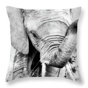Elephant Portrait In Black And White Throw Pillow