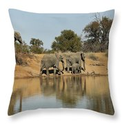 Elephant Refelction Throw Pillow