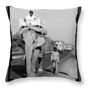 Elephant Road Traffic Throw Pillow