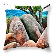 Elephant Rocks And Tree Throw Pillow
