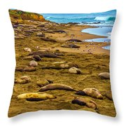 Elephant Seals Near Cambria  Throw Pillow