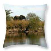 Elephant Sighting Throw Pillow