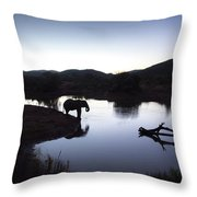 Elephant Silhouette At Sunset Throw Pillow