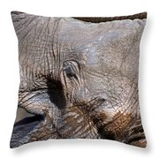 Elephant Smile Throw Pillow