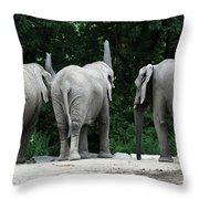 Elephant Trio Throw Pillow