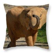 Elephant Walk Throw Pillow