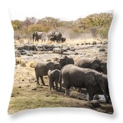 Elephant Watering Hole Throw Pillow
