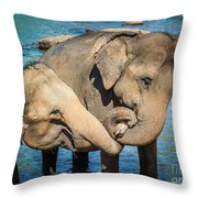 Elephants Bathing In A River Throw Pillow
