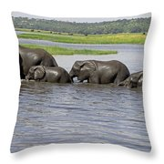 Elephants Crossing Chobe River Throw Pillow