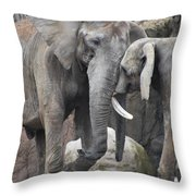 Elephants Playing 2 Throw Pillow