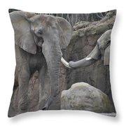 Elephants Playing 3 Throw Pillow
