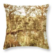 Elevated Country Throw Pillow
