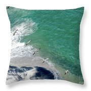 Eleven Brown Pelicans Throw Pillow