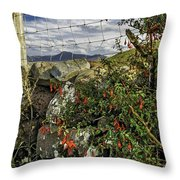 Elevetions Throw Pillow