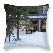 Elk Come Calling Throw Pillow