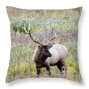 Elk In Wildflowers #1 Throw Pillow