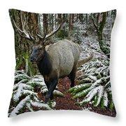 Elk In Winter Throw Pillow