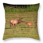 Elk Kisses Throw Pillow by Jemmy Archer