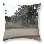 Show Low Landscape Throw Pillow
