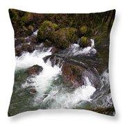 Elkhorn Creek 2 Throw Pillow
