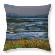 Elkhorn Slough Throw Pillow