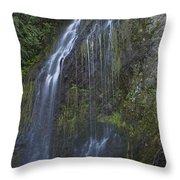 Elkview Falls Throw Pillow