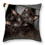 Ellen And Elvira Throw Pillow
