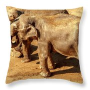 Ellephants Throw Pillow