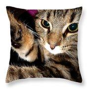Ellie Cat Throw Pillow