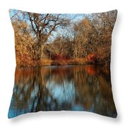 Elm By The Connecticut River In Autumn Throw Pillow