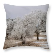 Elm Frosting Throw Pillow