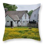 Elm Grove Farm Throw Pillow