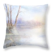 Elmore Park In Winter Throw Pillow