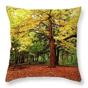 Elora Gorge Campsite In Fall Throw Pillow
