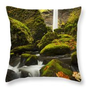 Elowah Autumn Throw Pillow
